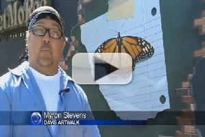 VIDEO: Davis Creates Largest Street Art Collection in US