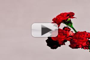 VIDEO: First Listen: John Legend's New Single 'Caught Up'