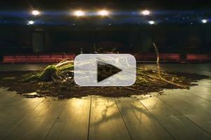 STAGE TUBE: Trailer for RSC's David Tennant-Led RICHARD II, Premiering in Cinemas 12/3