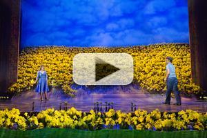 BWW TV: Watch Video Highlights of Norbert Leo Butz, Kate Baldwin & More in BIG FISH