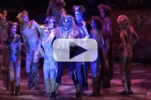 STAGE TUBE: First Look at Kenneth Prymus, Jennifer Shrader and More in Highlights of NCT's CATS