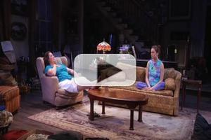 BWW TV: First Look at Highlights of Victory Gardens' APPROPRIATE