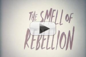 BWW TV Exclusive: Celebrating MATILDA's Grammy Nominated Score- 'The Smell of Rebellion' Music Video!