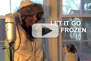 VIDEO: FROZEN Video of the Day - 'Let It Go' Inspires Adorable Serenade