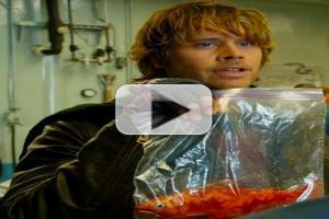 VIDEO: Sneak Peek - 'Fish Out of Water' on Tonight's NCIS: LA