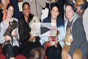 BWW TV: It's Puppy Playtime! Audra McDonald Hunts for a LADY DAY Pooch