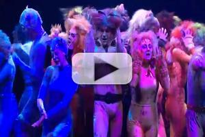STAGE TUBE: Highlights from Marriott Theatre's CATS, Opening Tonight!