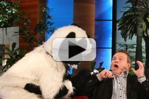 VIDEO: Eric Stonestreet Gets Scared...Again on ELLEN