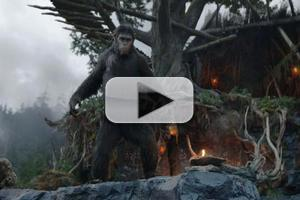 VIDEO: New International Trailer for DAWN OF THE PLANET OF THE APES