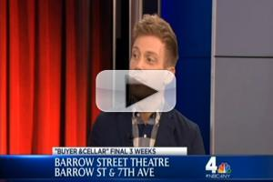STAGE TUBE: BUYER & CELLAR's Barrett Foa Discusses Babs, L.L. Cool J