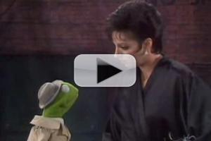 STAGE TUBE: The Muppets Take Broadway? Watch Performances with Minnelli, Vereen, Merman & More!