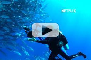 VIDEO: First Look - Trailer & Key Art for Netflix Original Documentary MISSION BLUE