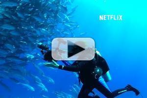 VIDEO: First Look - Trailer & Key Art for Netflix Original Documentary MISSION BLUE