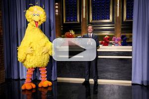 VIDEO: Jimmy Celebrates Sesame Street's 45th Anniversary on TONIGHT SHOW
