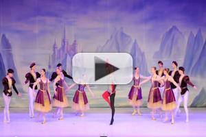 STAGE TUBE: Sneak Peek at State Ballet Theatre of Russia's SWAN LAKE