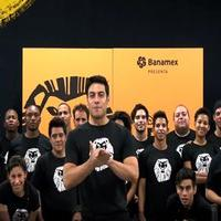 STAGE TUBE: THE LION KING Companies from Around the World Celebrate 80 Million Audience Members