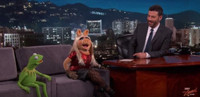 VIDEO: MUPPETS' Stars Kermit and Miss Piggy Discuss Recent Break-Up on KIMMEL