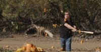 VIDEO: Andy Richter Smashes Pumpkins on CONAN