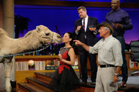 VIDEO: Lucy Liu, Terry Crews & James Corden Have Fun with Animals on LATE LATE SHOW