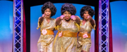 BWW Review: DREAMGIRLS Serenades Birmingham With Song, Soul and Sparkle