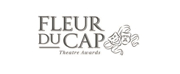 Fleur du Cap Theatre Awards Clarifies Scope, Eligibility and Processes for Theatre-Makers, Performers and Press