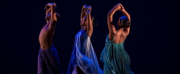 DANCING ON GLASS, LIVE LOVE BOLLYWOOD and MUCIC A'LA CARTE Kick Off Dance For All's 2017 Season