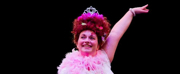 FANCY NANCY THE MUSICAL Opens this Weekend
