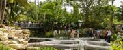 Photo Flash: Mounts Botanical Garden Dedicates New Windows on the Floating World