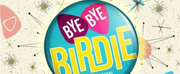 BWW Review: BYE BYE BIRDIE at Meridian High School