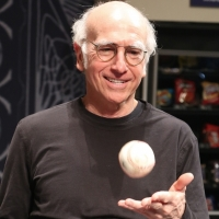 Will FISH IN THE DARK's Larry David Return to 'Curb'? Co-Star Says 51% Chance