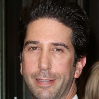 Oy Vey! David Schwimmer to Produce TV Pilot About Orthodox Jews