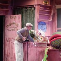 Photo Flash: First Look at LITTLE SHOP OF HORRORS at Dante Hall