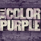 VIDEO: Cynthia Erivo, Isaiah Johnson Discuss The Healing Experience of THE COLOR PURPLE