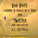 A.J. Ciccotelli to Present BAD BOYS as Part of Spotlight-On Festival