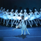 BWW Preview: SWAN LAKE by The State Ballet of Russia