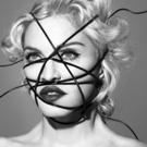 Brooklyn Museum Presents Madonna x Marilyn Minter, 1/19
