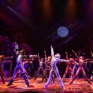 BWW TV: They're Back! Watch Highlights from CATS on Broadway!