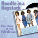 New McCree Theatre Presents a Gala Reception & World Premiere Performance of A NEEDLE IN A HAYSTACK: THE STORY OF THE VELVELETTES
