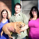 Animal Planet Announces New Series MY FAT PET Starring Trainer Travis Brorsen