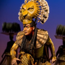 Disney's THE LION KING North American Tour Celebrates Record-Breaking Engagement at Providence Performing Arts Center