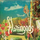 London-Based/Bahrain Natives Flamingods Unveil Album Track and Video for 'Rhama'