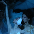 BWW Review: Shanghai Ballet Brings SWAN LAKE Back to Melbourne at Regent Theatre