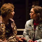 BWW Interview: Playwright Michele Riml and Actress Elizabeth Townsend Talk Beauty and Strength in MISS TEEN