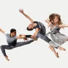 Kamea Dance, Israel Ballet, Ballet Hispanico & More Set for 2016-17 Haifa Dance Series