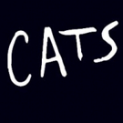 Extra Week of Performances on Sale for CATS in Sydney
