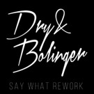 Dry & Bolinger Drop Their Highly Anticipated Rework of 'Say What'