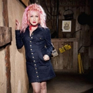 Cyndi Lauper Heads to North Carolina for LGBT Community Benefit