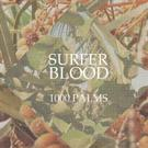 Surfer Blood Marks Triumphant Return With '1000 Palms' Out Now