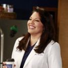 Tony Winner Sara Ramirez Exits ABC's GREY'S ANATOMY After 10 Seasons