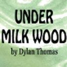 BWW REVIEW: Dylan Thomas' Intriguing Fictional Town Of Llareggub Comes To Life With Genesian Theatre Company's UNDER MILK WOOD